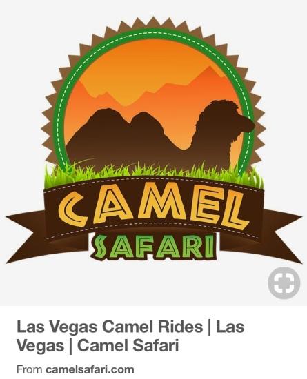 Camel Safari www.camelsafari.com