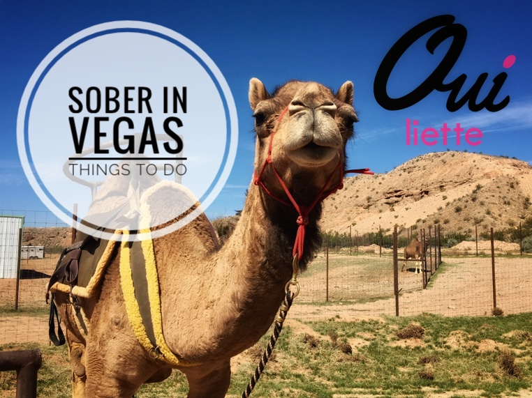 Sober in Vegas…or not?