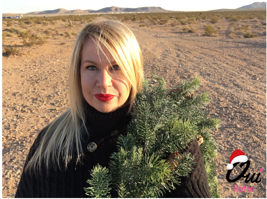 Christmas Photo Shoot in theDesert.