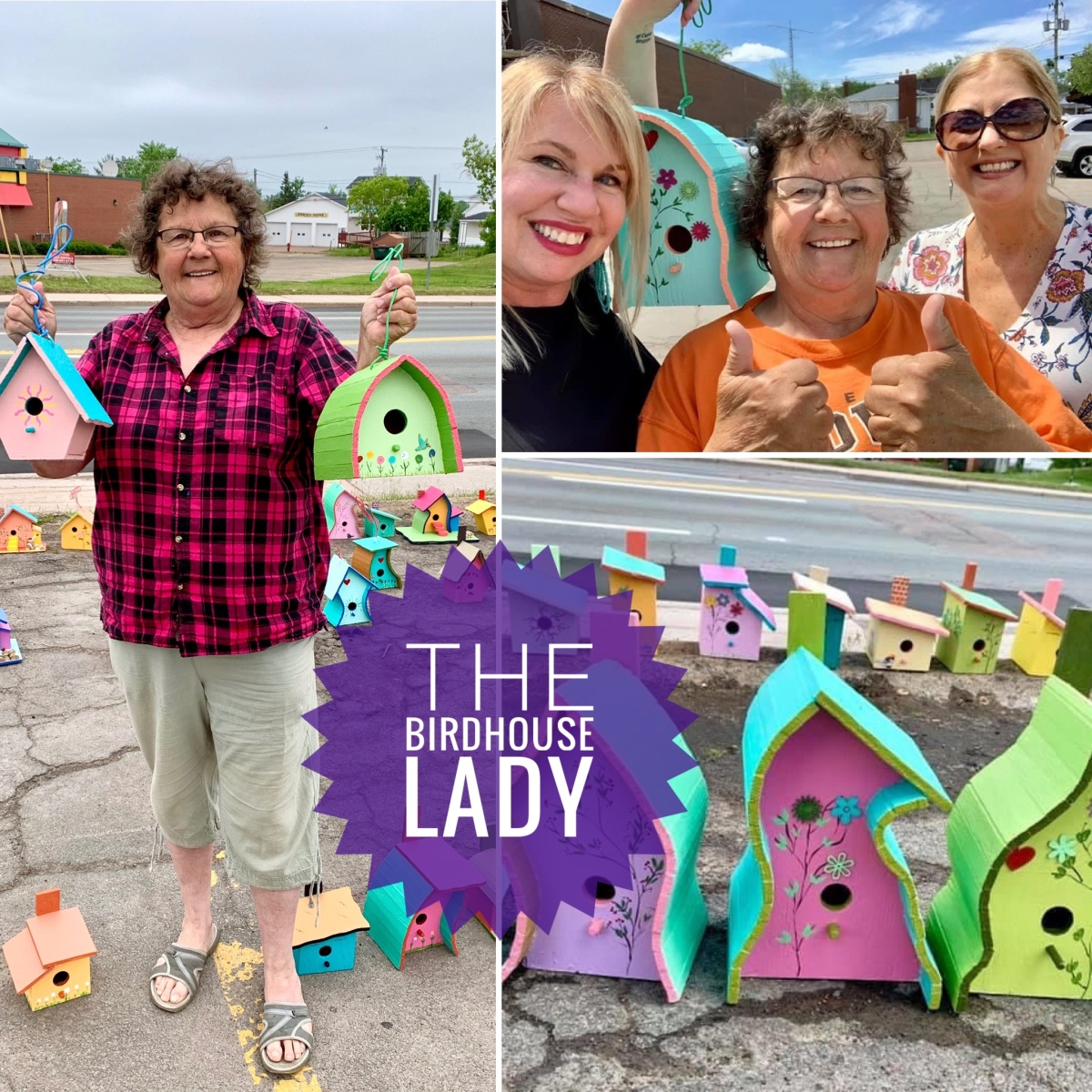 The Inspiring Story of the Birdhouse Lady